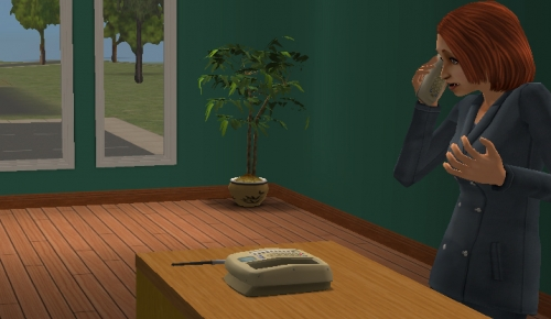 Shell (SIMS)